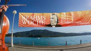 Brahms_408_2